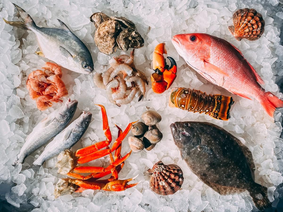 Fisherman's Catch Night | Seasons Restaurant